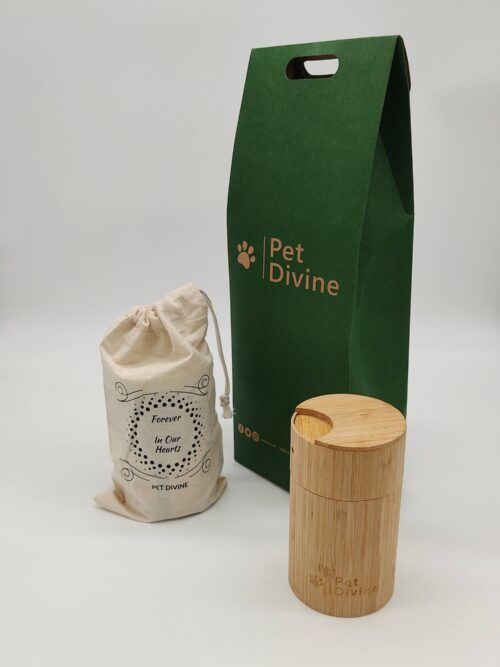 Pet Divine Evergreen Package